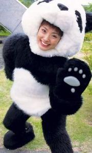 aya ueto panda